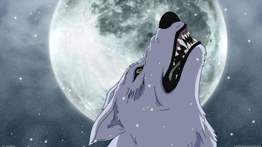 Kiba_Moon_1920_notxt